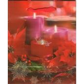 Albi Dárková papírová malá taška 13,5 x 11 x 6 cm Vánoční TS4 96252