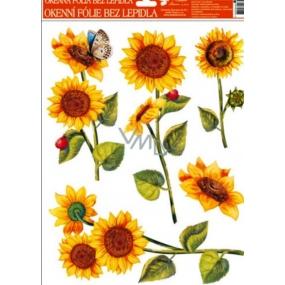 Room Decor Okenní fólie bez lepidla slunečnice berušky 42 x 30 cm 1 kus