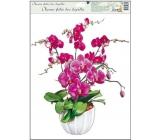 Room Decor Okenní fólie bez lepidla orchideje tmavě růžová 42 x 30 cm