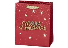 BSB Luxusní dárková papírová taška 23 x 19 x 9 cm Vánoční s 3D nápisem Merry Christmas VDT 004-A5