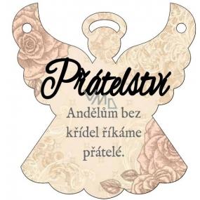 Albi Závěsná plaketka anděl Přátelství 9 x 10 cm
