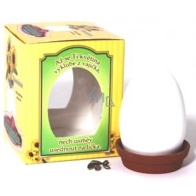 Albi Minizahrádka Slunečnice vajíčko dárkové balení sady na pěstování