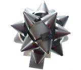 Nekupto Hvězdice střední Luxus stříbrná, stříbrný proužek 6,5 cm HV 109 02