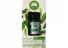 Elysium Spa Eucalyptus 100% esenciální olej 10 ml