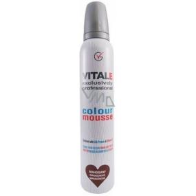 Vitale Exclusively Professional barvící pěnové tužidlo Mahogany - Mahagon 200 ml