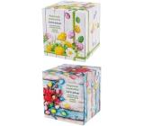 Linteo Soft & delicate Velikonoční papírové kapesníky bílé 2 vrstvé 80 kusů