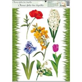 Room Decor Okenní fólie bez lepidla travička a květinky Typ 1 vlčí mák 42 x 30 cm