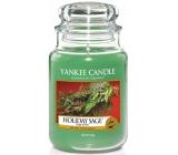 Yankee Candle Holiday Sage Classic - Vánoční šalvěj vonná svíčka Classic velká sklo 623 g