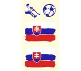 Arch Tetovací obtisky na obličej i tělo Slovenská vlajka 1 motiv