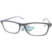 Berkeley Čtecí dioptrické brýle +4,0 černé, šedé stranice 1 kus MC2 ER2135