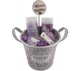 Bohemia Gifts Pro babičku plechová ošatka sprchový gel 200 ml + vlasový šampon 200 ml + šumivá koule 100 g + tuhé mýdlo 30 g+ plechový box + zápich, kosmetická sada