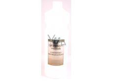 Amoené Lavosept Citron dezinfekce nástrojů a ploch roztok pro profesionální použití 1 l náhradní náplň