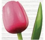 Bohemia Gifts Dřevěný tulipán růžovo-bílý 34 cm
