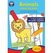 Ditipo Omalovánky Zvířátka k výuce angličtiny pro děti 3+ 24 stran