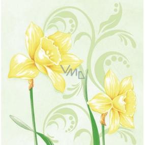 Ditipo Papírové ubrousky 3 vrstvé 33 x 33 cm 20 kusů Velikonoční Narcisy