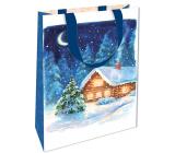 Nekupto Geschenk Papiertüte mit Prägung 17,5 x 11 x 8 cm Weihnachtsblau mit Cottage WLFS 1988