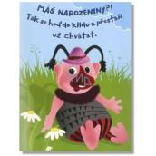 Albi Hrací přání do obálky K narozeninám Chvátám Josef Dvořák 14,8 x 21 cm