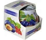 Admit Red Currant & Plum - Červený rybíz a švestka dekorativní aromatická svíčka ve skle 80 g