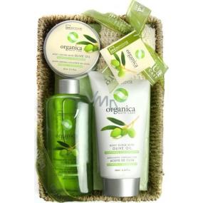 Idc Institute Organica Olive Oil sprchový gel 188 ml + tělové mléko 180 ml + tělový peeling 60 ml + sisalová houbička 1 kus v košíku, kosmetická sada