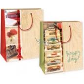 Ditipo Dárková papírová taška střední béžová auta, kniha, psací stroj, růže 18 x 10 x 22,7 cm DC