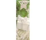 Nekupto taška láhev WLH 1257 50 vánoční