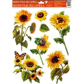 Room Decor Okenní fólie bez lepidla slunečnice oranžový motýl 42 x 30 cm 1 kus