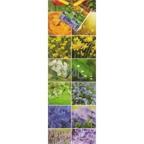 Nekupto Dárková papírová taška na láhev 33 x 10 x 9 cm různé květy 1145 50 KFLH