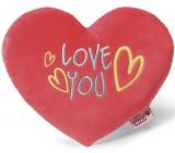 Nici Love You Polštář plyšový srdce 25 cm
