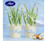 Nekupto Papírové ubrousky Velikonoční modré Sněženky v bílém květináči 3 vrstvé 33 x 33 cm 20 kusů