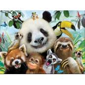 Prime3D Plakát Zoo - Selfie 39,5 x 29,5 cm