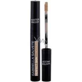 Gabriella Salvete Perfect Skin Concealer voděodolný korektor 03 6,2 ml