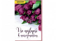 Nekupto Přání k narozeninám Fialové tulipány 115 x 170 mm 3563 G