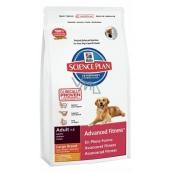 Hills Canine Adult Large Breed kompletní krmivo pro psy velkých plemen 18 kg
