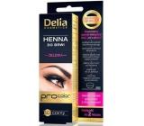 Delia Henna Tint gel na obarvení obočí 1.0 černá 1 kus