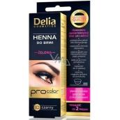 Delia Cosmetics Henna Tint gel na obarvení obočí 1.0 černá 1 kus