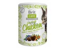 Brit Care Cat Snack Křupavý kuřecí pamlsek s rakytníkem a borůvkami doplňkové krmivo pro dospělé kočky 100 g
