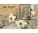 Lima Wellness Present Borový les aroma svíčka zelená válec 70 x 150 mm 1 kus