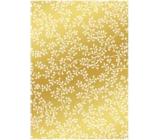 Ditipo Dárkový balicí papír 70 x 100 cm Trendy Colours zlatý - bílé větvičky 2 archy