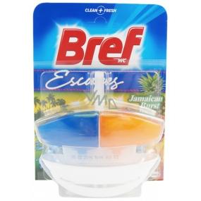 Bref Duo Aktiv Jamaica Burst tekutý WC blok komplet 50 ml