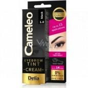 Delia Cosmetics Cameleo Krémová profesionální barva na obočí, bez amoniaku 1.0 Black - Černá 15 ml
