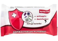Doctor Wipes Spring Line Antibacterial vlhčené antibakteriální ubrousky 15 kusů