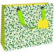 Nekupto Dárková papírová taška luxusní malá 18 x 16 x 8 cm Zelená 1839 LIS