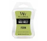 WoodWick Fern - Kapradina vonný vosk do aromalampy 22.7 g
