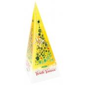 Liran Vánoční Zelený čaj, med a skořice 20 x 2 g