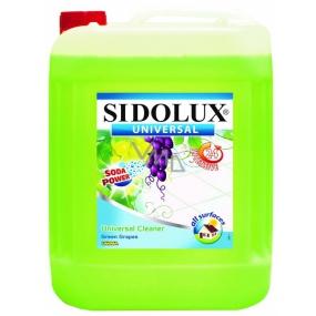 Sidolux Universal Zelené hrozny mycí prostředek na všechny omyvatelné povrchy a podlahy 5 l