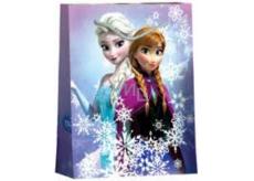 BSB Disney Dárková papírová taška dětská 22,9 x 17,5 x 9,8 cm Frozen DT M