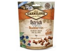 Carnilove Dog Pštros s ostružinami lahodný křupavý pamlsek pro všechny psy pro zdravé srdce 20 g