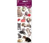 Samolepky kočky, kočka a velké klubko 34,5 x 12,5 cm