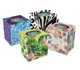 Velvet Ecopack hygienické kapesníčky 3 vrstvé 60 kusů v krabičce
