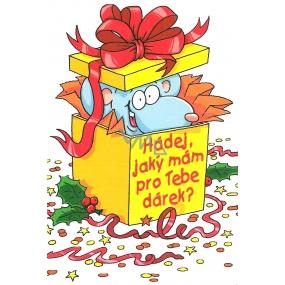 Nekupto Blahopřání Hádej jaký mám pro tebe dárek?